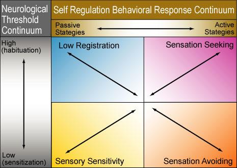 sensory_continuum